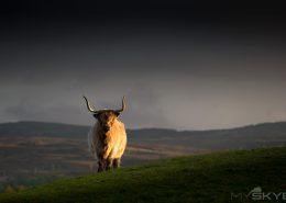 Schottland Vortrag
